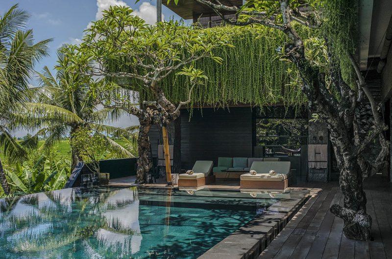 Villa Mana Pool, Canggu   6 Bedroom Villas Bali